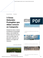 3 Áreas Naturales Protegidas Que Debes Conocer en Campeche _ México Desconocido