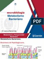 CLASE SEMANA 03 MICROBIOLOGIA.pptx