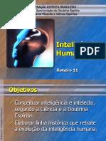 Roteiro 11 Inteligencia Humana