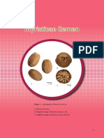 Myristicae Semen - An Microscopic Analysis of Nutmeg (Myristica Fragrans)