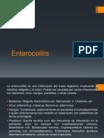 Exposicion enterocolitis
