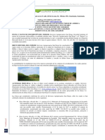 SAN DIEGO.pdf