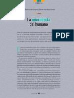 Micro Biot Adel Human o