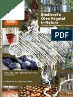 Biodiesel e óleo vegetal in natura.pdf