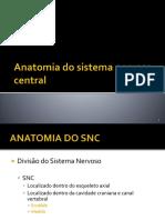 Anatomia Na Prática- Sistema Musculoesquelético
