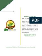 Distribucion en Planta okra