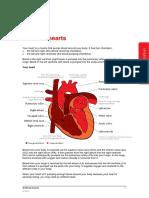 Artifical-hearts-information-sheet.pdf