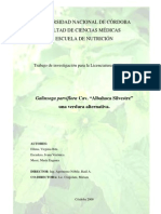 Albahaca Silvestre Una Verdura Alternativa