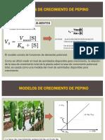 Modelos de Crecimiento de Pepino - Copia - Copia