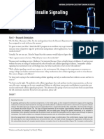 insulin_signaling.pdf
