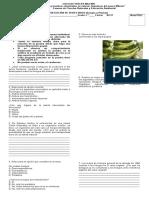 Examen Clasificacion animal.doc
