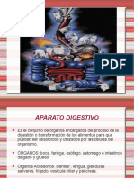 aparato digestivo - uba milstein