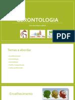 1. Gerontologia Uma Abordagem Global 123 (1)
