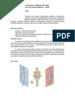 Practico 1 - Generalidades