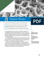 Marine Science - Marine Worms