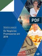 Os Negócios Promissores Em 2019_v4