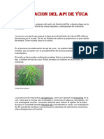 API DE YUCA PROYECTOS 1.docx