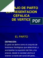 Clase 12. Trabajo de Parto Cefalica Vertex