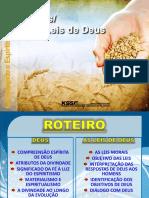 2016-1-14 Deus_As_Leis_De_Deus-MarisaL.pptx