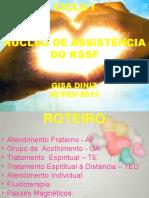 Nucleo_de_Assistencia_KSSF-Gisa Diniz.pptx