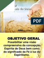 2016-02-03-CE-Deus As Leis De Deus-Rosana De Rosa.pptx