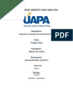 Trabajo Final - Anatomia y Fisiologia Del Sistema Nervioso - Ana Duarte