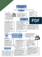 247425683-Mapa-Conceptual-Origen-y-Evolucion-de-La-Psicologia.docx