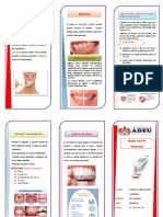 TRIPTICO Imagen Dental