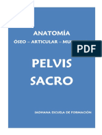 3º Anatomia Pelvis Sacro