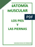 1ºanatomía Pies Piernas