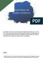 Biosintesis de Ácidos Núcleicos