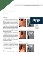 gastrolat2012n100008.pdf