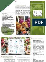 1. Brosur Gastritis