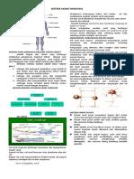 114104439-Catatan-Sistem-Saraf-Manusiaddd.docx