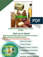 Clase 1b-Lipidos-2019 (1) (1) (1).pdf