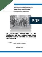 La Seguridad Ciudadana y El Fenomeno de Temor Delictual en Arequipa