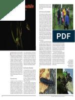Nachts tanzen die Leuchtkäfer - WWF - Lebensraum Kulturlandschaft Burghölzli