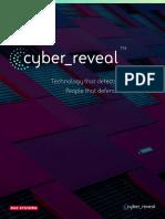 Cyber Reveal Brochure