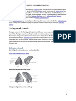 Endocrine Sist