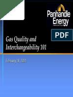 20040217162923-panhandle.pdf