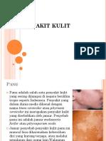 e. S2. p6. Penyakit Kulit ..pptx