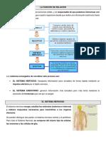 LA FUNCIÓN DE RELACIÓN.docx