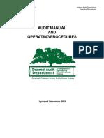 Audit Manual.pdf