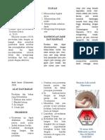 Leaflet Jahe