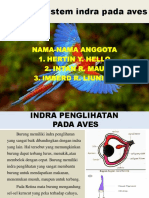 Sistem Indra Aves
