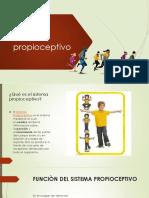 Sisteme propioceptivo .pptx