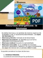 Fuentes de Biomasa