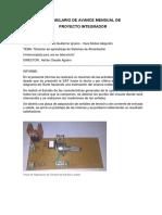 Formulario-Avance-Mensual.docx