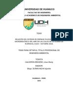 CALDERÓN BRICEÑO, Liliana Sheily.pdf