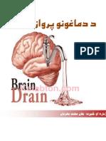 Brain Rained
